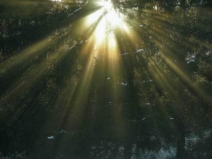 Luce naturale o riflettori artificiali nell'era dei social